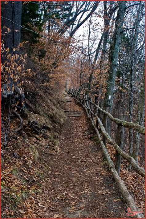 appalachian trail section hike planner the o jays and appalachian trail on pinterest