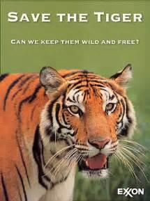 Save Tiger Essay In by Jagadish Kesireddi Save Tigers