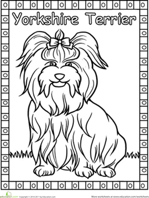 yorkie coloring pages yorkie coloring page animals kindergarten png