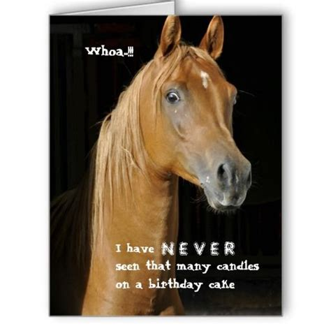 printable birthday cards with horses 102 best images about horse birthday quotes on pinterest