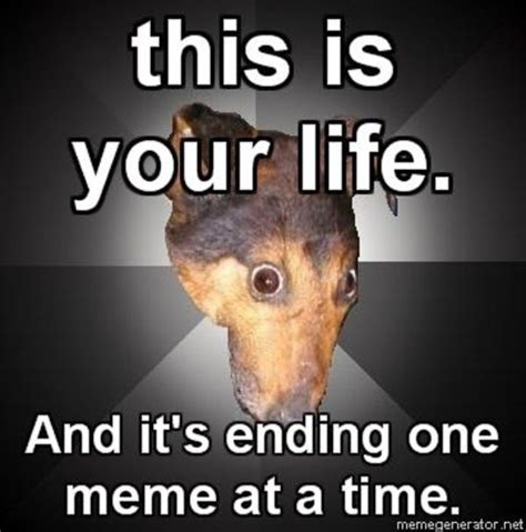 Meme Depression - depressed dog meme memes