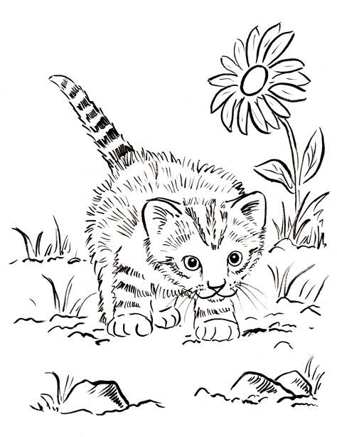 Coloring In Pictures Kitten Coloring Page Samantha Bell by Coloring In Pictures