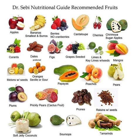 best nutritional diet best 25 dr sebi cleanse ideas on dr sebi