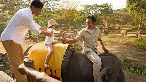 paket elephant  safari bali promo khusus wni