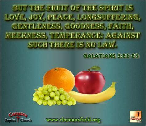 fruit of the spirit kjv galatians 5 22 23 kjv but the fruit of the spirit is