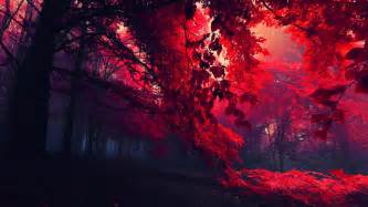 Red leaves beautiful fall landscapes hd wallpapers download free