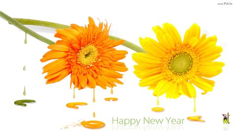 happy new year 2013 wishes wallpapers sms gifts