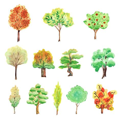 water color tree 12 watercolor tree png transparent onlygfx