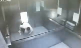 crushed by elevator horrifying moment man is crushed by an elevator in taiwan