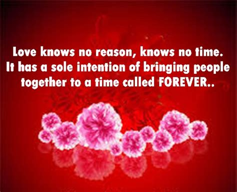 best valentines day sayings best happy valentines day quotes 2018 to impress your