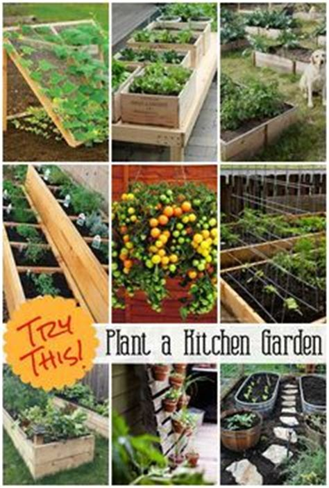 Vegetable Garden Planner Planner Layout And Vegetable Starting A Fruit And Vegetable Garden