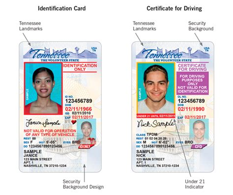 Address Lookup By Drivers License Number Drivers License Faqs Dmvorg