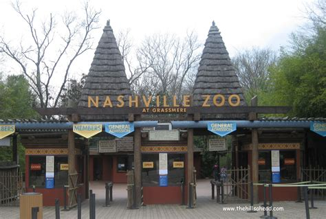 Nashville Search Nashville Zoo