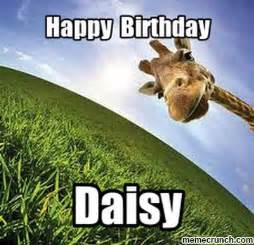 Giraffe Birthday Meme - happy birthday