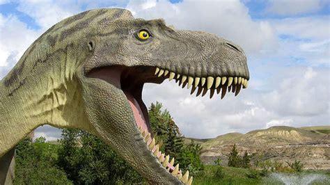 dinosaur wallpaper hd  wallpaperscom