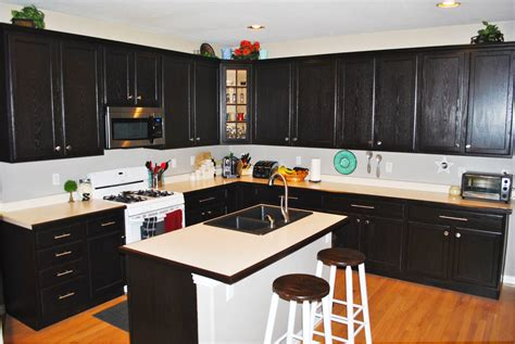 black cabinet kitchen ideas custom black kitchen cabinets roy home design