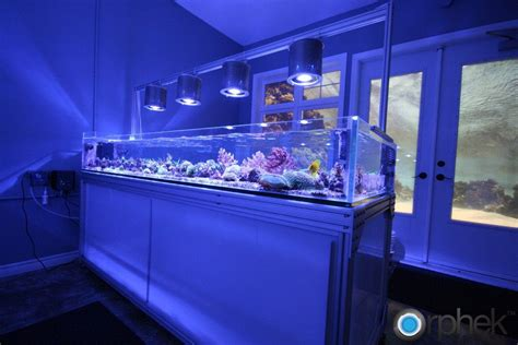 Lu Led Aquarium Diy diy aquarium led lighting jpg 1023 215 682 cool fish tanks aquariums fish tanks