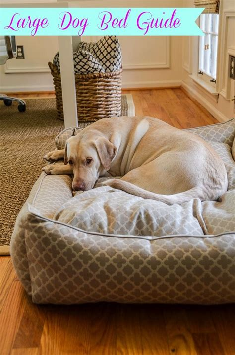 huge dog beds 25 best ideas about large dog beds on pinterest big dog