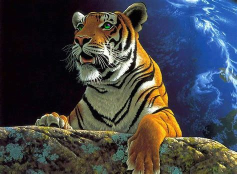 fotos animales wallpapers fondo escritorio dibujo tigre
