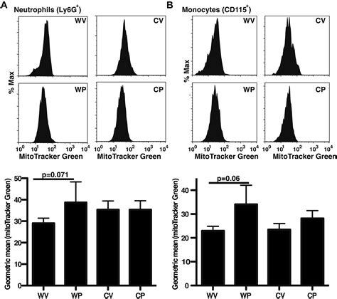 Mba Neutrophil Blood Preparation Murine Blood by Supplemental Materials For Pioglitazone Restores Phagocyte