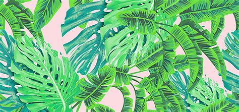 plant background banana background banana plant poster banner background