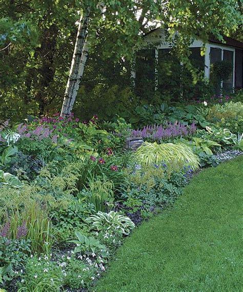 shady border garden of my dreams pinterest