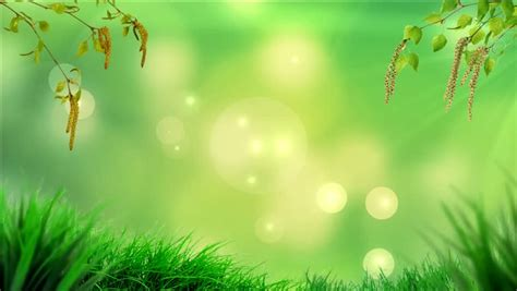 beautiful themes for powerpoint 2007 powerpoint background stock footage video shutterstock