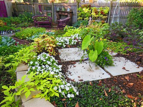 Shade Vegetable Garden Shade Garden Plans Photograph Sweet Sweet Potato Design In