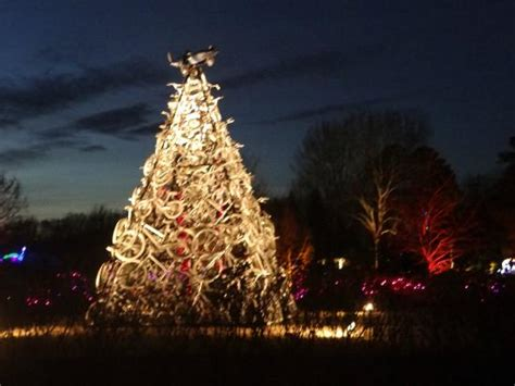 lewis ginter lights hours bicycle tree picture of lewis ginter botanical