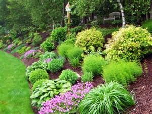 Shrub Garden Ideas Jak Vyřešit Zahradu Ve Svahu