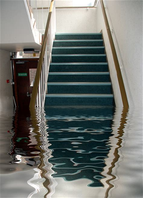 my basement flooded what do i do how do i if my home has a basement
