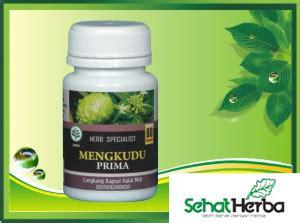 Obat Herbal Mengkudu obat herbal kapsul mengkudu sehatherba