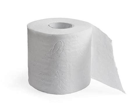 M S Toilet Paper by Royalty Free Toilet Paper Pictures Images And Stock