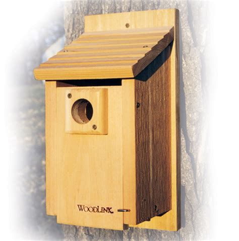 blue bird house hole size robin birdhouse plans popular house plans and design ideas
