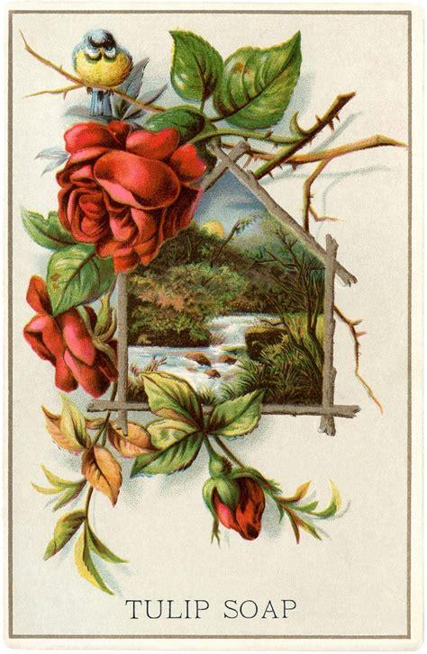 lovely vintage landscape  roses  graphics fairy
