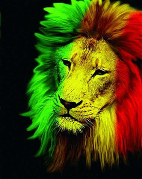 wallpaper rasta gif lion rasta
