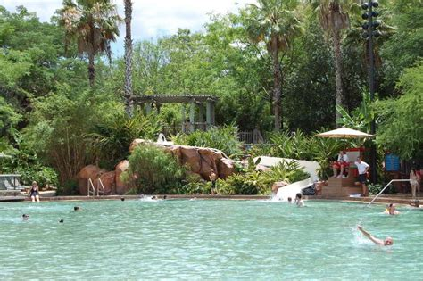jambo house pool disney s animal kingdom lodge build a better mouse trip