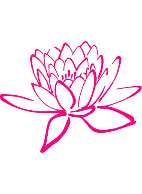 floreros para una flor dibujos de flores la belleza se encuentra en la naturaleza