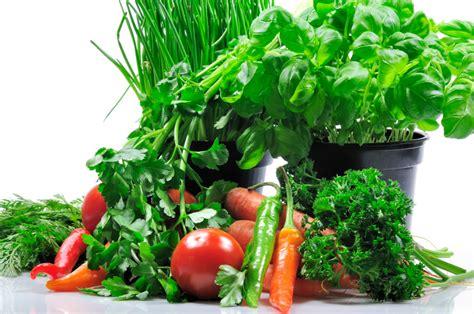 wann wird getreide geerntet liebst 246 ckel ernten 187 tipps hinweise zur ernte