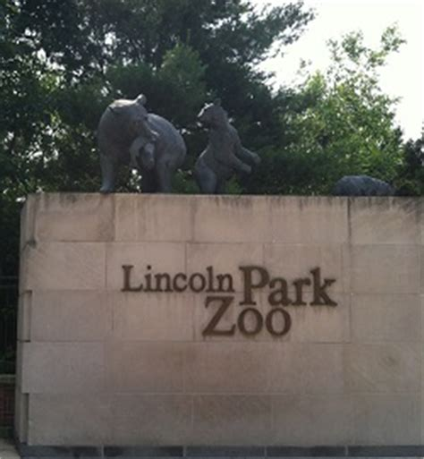cheap hotels lincoln park chicago guide to lincoln park zoo chicago chicago on the cheap