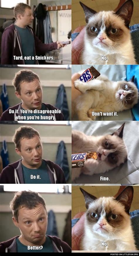Memes Snickers - littlefun grumpy cat eat a snickers