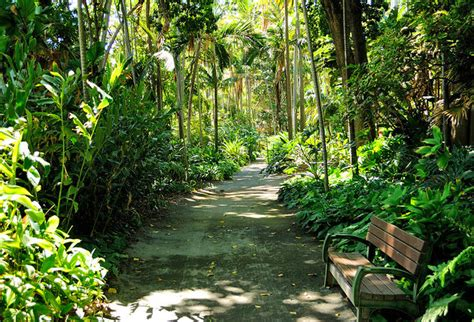 Hawaii Botanical Garden 20 Kid Friendly Activities On Oahu Practical Family