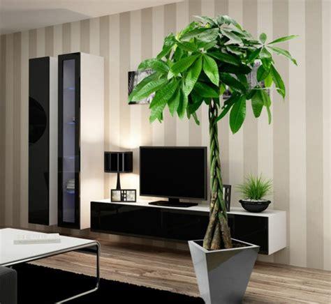 goldfruchtpalme wohnzimmer zimmerpflanzen ausw 228 hlen aber wie innendesign