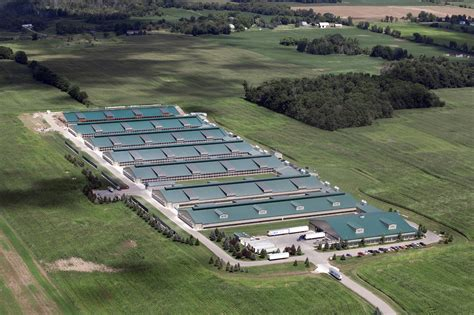 Shed With Porch Plans Free investigation factory farms producing massive