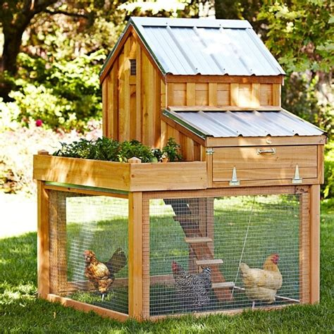 Backyard Chicken Coop Plans Diy Backyard Chicken Coop14