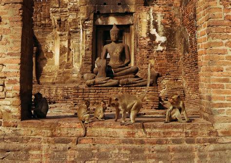 lopburi travel guide visiting  famous thai monkey temple