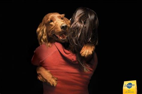 irish setter dog food pedigree dog food quot irish setter quot print ad by tbwa buenos