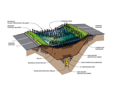 rain garden section bioswale made in jakarta