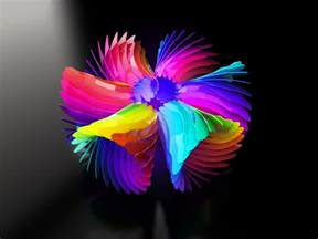 colorful flower colorful flower by d03090 on deviantart