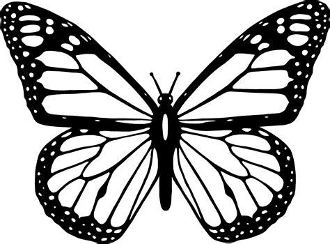 monarch butterfly coloring pages free monarch butterfly clipart coloring page pencil and in